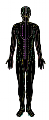 Acupuncture meridians are invisible energy pathways in your body that have been used therapeutically for over 5000 years